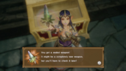Hyrule Warriors Sealed Weapon Zelda (Level 3 Rapier)