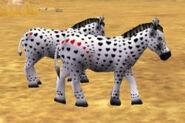 Valentine Zebras