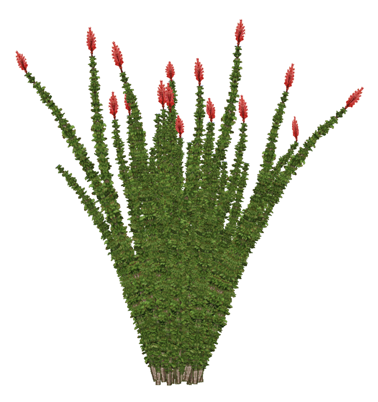 Category Desert Foliage Zt2 Download Library Wiki
