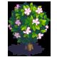 Jasmine-icon.png