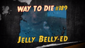 Jelly Belly-ed