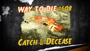 Catch & Decease