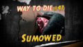 Thumbnail for version as of 23:17, March 15, 2016