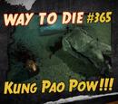 Kung Pao Pow!!!