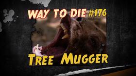 Tree Mugger