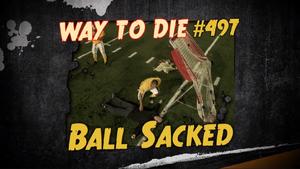 Ball Sacked