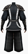 Fujin-poisonous armor-male-back