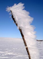 Feather ice 2, Alta plateau, Norway