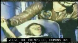 Ham the Chimp Goes to Space!