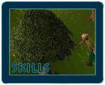 File:Skills.jpg