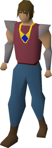 File:Sapphire necklace equipped.png