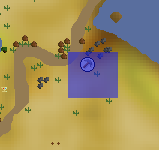 Desert Phoenix location