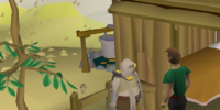 The Knight's Sword