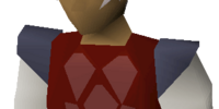 Red dragonhide armour