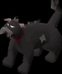 Lazy cat (black) pet