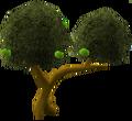 Apple tree.png