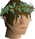 File:Druidic wreath chathead v1.png
