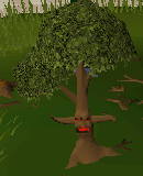 File:Ent (tree).png