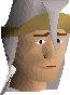 File:Armadyl mitre chathead.png