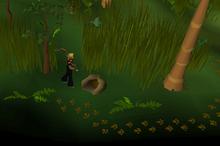 Feldip Weasel Hunting