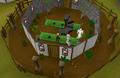 Jatix's Herblore Shop.png