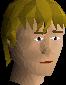 File:Bowl wig chathead.png