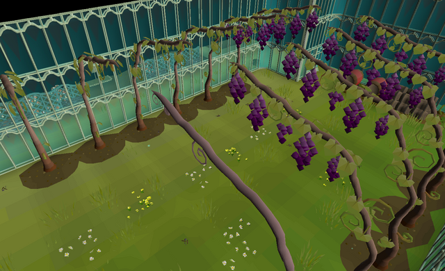 File:Vinery.png