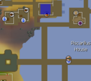 Client of Kourend/Quick guide
