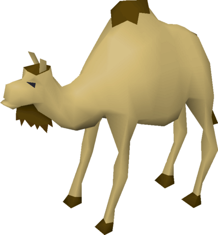 File:Cam the Camel.png