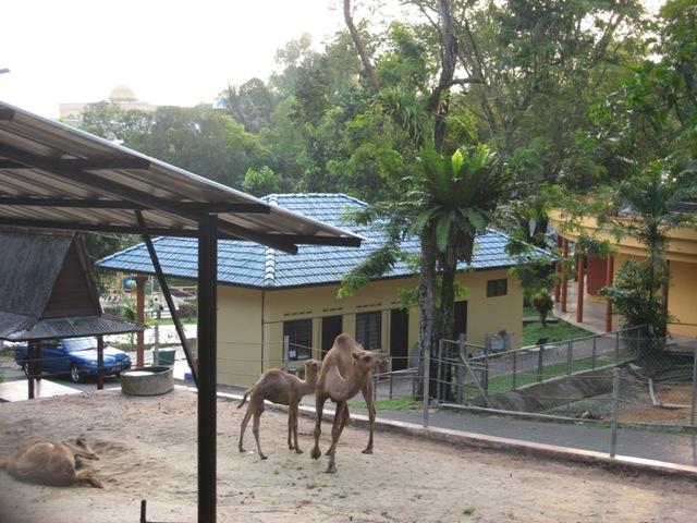 Kabra Zoo