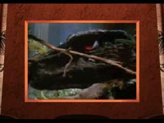 File:Deinonychus....jpg