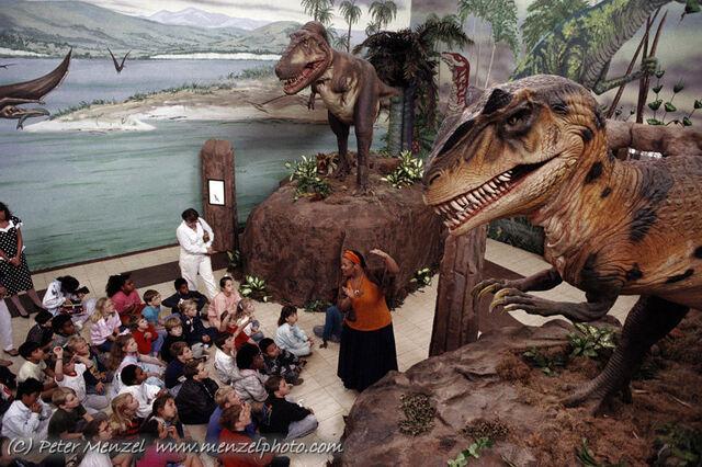 File:Allosaurus.jpg