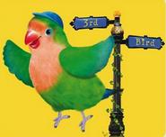 3rd & Bird Samuel Promo