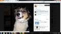 Thumbnail for version as of 08:09, September 13, 2014