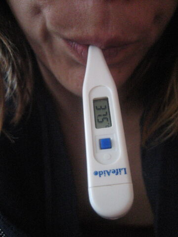File:Oral Thermometer.jpg