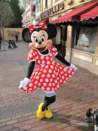 Minnie Mouse Suit