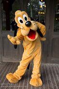Pluto Suit