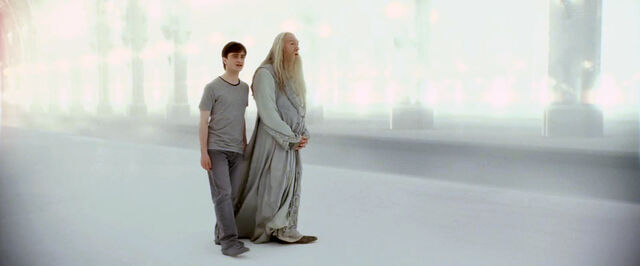 File:Harry and Albus limbo.jpg
