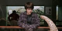 Underage magic