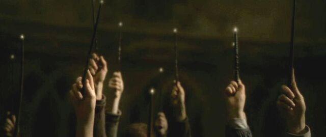 File:Wands of Hogwarts' students and staff 04.JPG