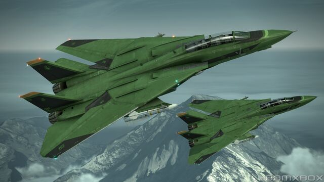 File:F-14D Super Tomcat's Green Version.jpg