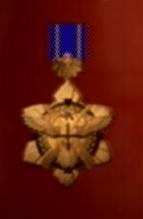 File:AC0 medal 9.png