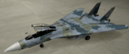 F-14D Mercenary color hangar