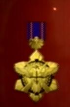 File:AC0 medal 11.png
