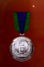 File:AC0 medal 14.png