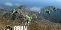 Grun Team