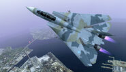F-14D ACX Flyby 6