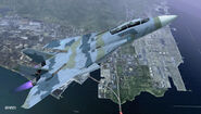 F-14D ACX Flyby 3