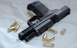 HK USP w .45 cal rounds