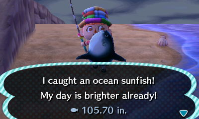File:Ocean SunFish.JPG